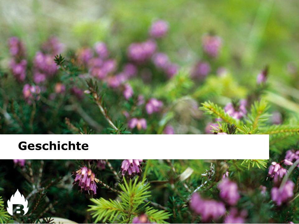 Kurzüberblick: September 1999 Die Gründung des Südtiroler Biomasseverbandes erfolgte am 24.