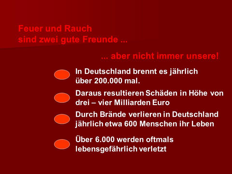 Feuer und Rauch sind zwei gute Freunde...... aber nicht immer unsere! In Deutschland brennt es jährlich über 200.000 mal. Daraus resultieren Schäden i