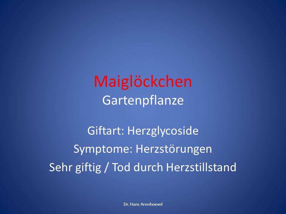 Maiglöckchen Gartenpflanze Giftart: Herzglycoside Symptome: Herzstörungen Sehr giftig / Tod durch Herzstillstand Dr. Hans Arenhoevel
