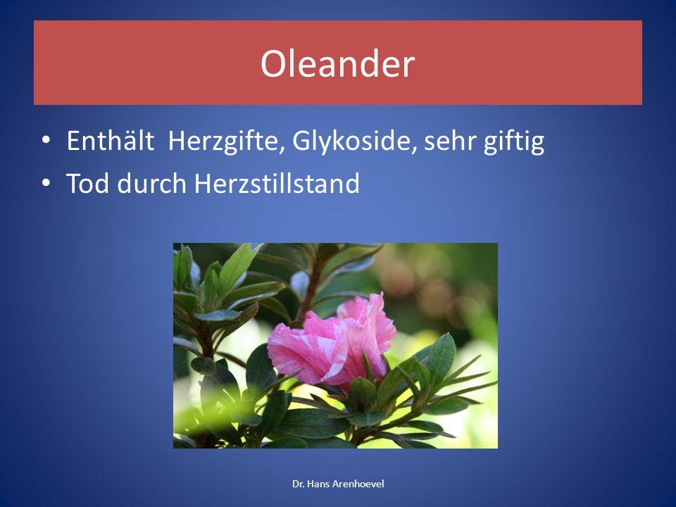 Oleander Gartenpflanze Giftart: Herzglykoside Samen besonders giftig Symptome wie bei Maiglöckchen: Kreislaufstörungen, Herzstillstand Therapie: Kaliumtabletten Dr.
