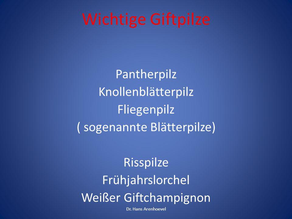 Wichtige Giftpilze Pantherpilz Knollenblätterpilz Fliegenpilz ( sogenannte Blätterpilze) Risspilze Frühjahrslorchel Weißer Giftchampignon Dr. Hans Are