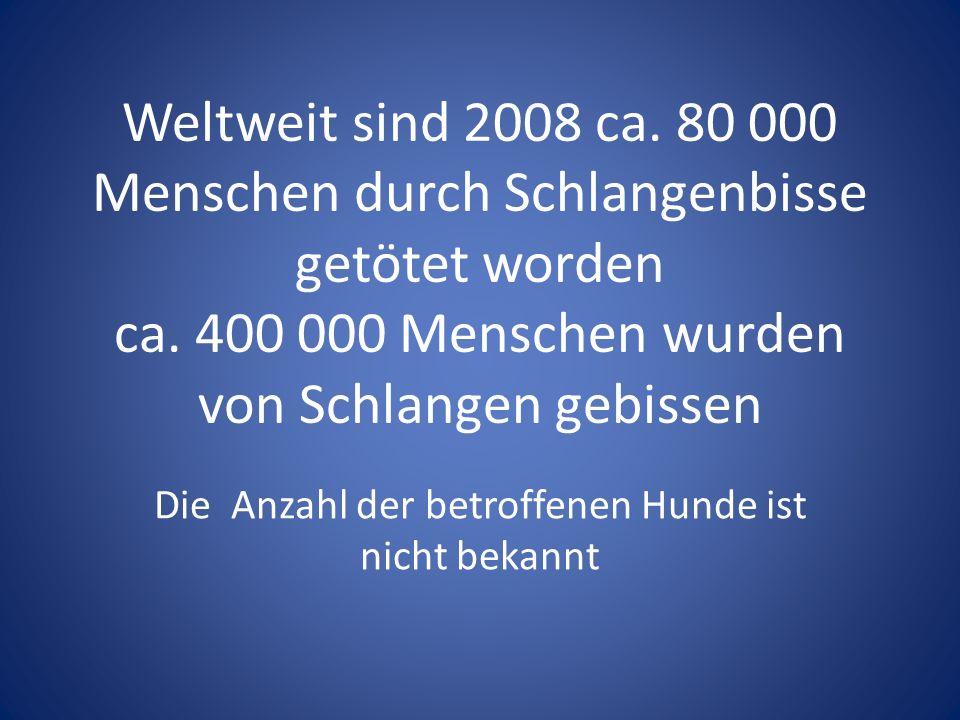 Es gibt in Deutschland 2 Arten von natürlich vorkommenden Giftschlangen Die Kreuzotter und die Aspisviper