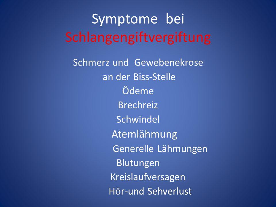 Symptome bei Schlangengiftvergiftung Schmerz und Gewebenekrose an der Biss-Stelle Ödeme Brechreiz Schwindel Atemlähmung Generelle Lähmungen Blutungen