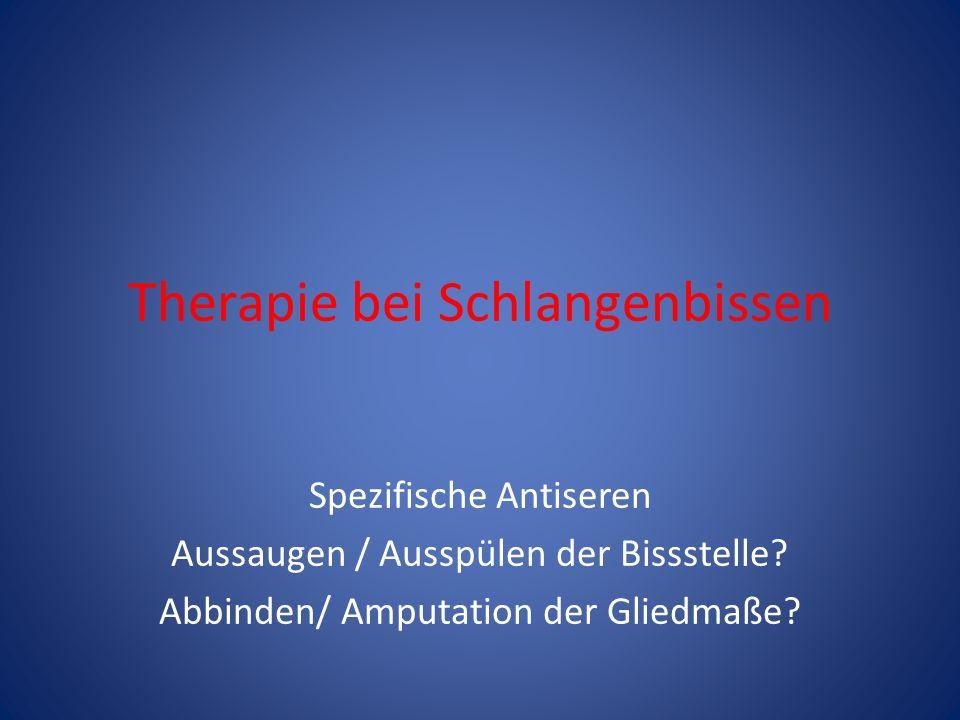 Therapie bei Schlangenbissen Spezifische Antiseren Aussaugen / Ausspülen der Bissstelle? Abbinden/ Amputation der Gliedmaße?