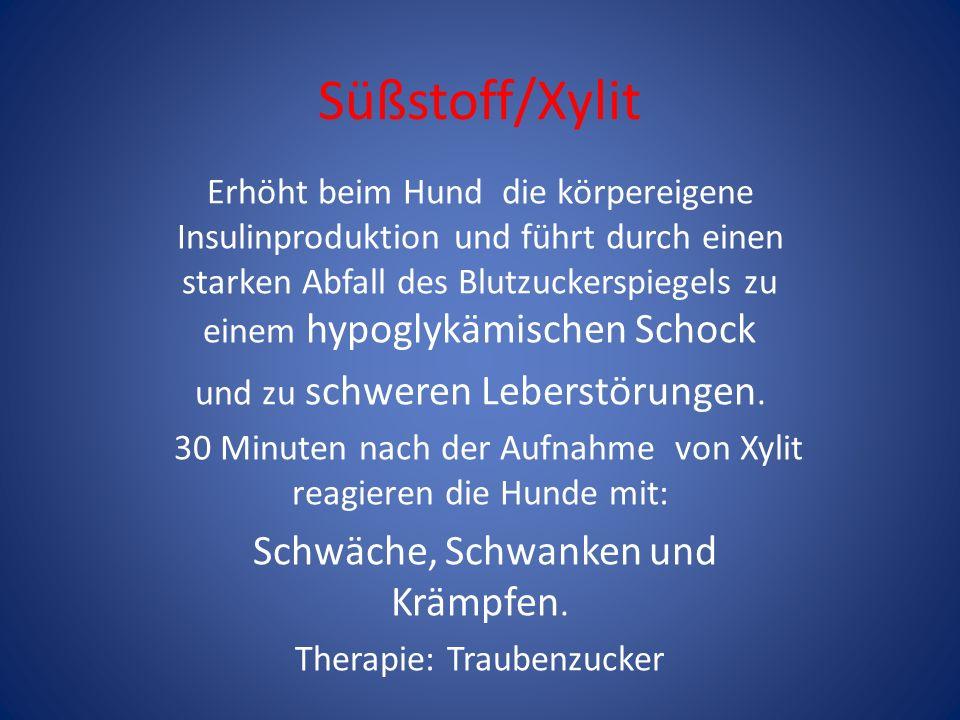 Süßstoff/Xylit Erhöht beim Hund die körpereigene Insulinproduktion und führt durch einen starken Abfall des Blutzuckerspiegels zu einem hypoglykämisch