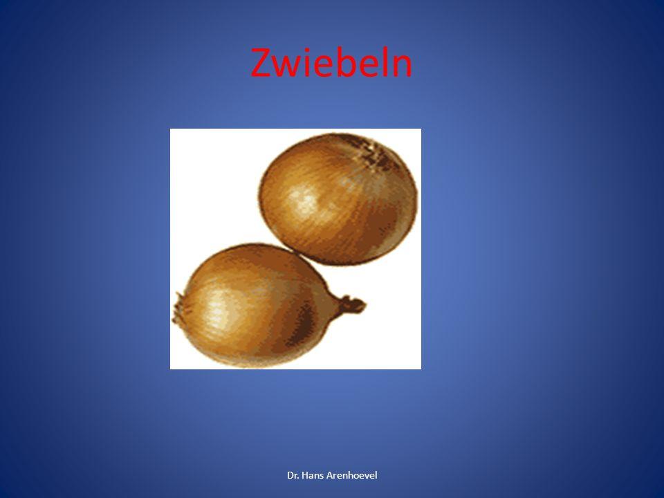 Zwiebeln/ Knoblauch sind roh, getrocknet und auch gekocht giftig Die toxische Dosis für Knoblauch beträgt 5 g/kg KG ganze Zehe und 1,25 ml /kg KG Knoblauchextrakt.