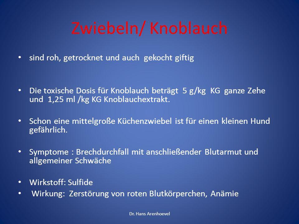 Zwiebeln/ Knoblauch sind roh, getrocknet und auch gekocht giftig Die toxische Dosis für Knoblauch beträgt 5 g/kg KG ganze Zehe und 1,25 ml /kg KG Knob