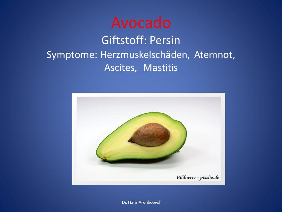 Avocado Giftstoff: Persin Symptome: Herzmuskelschäden, Atemnot, Ascites, Mastitis Dr. Hans Arenhoevel