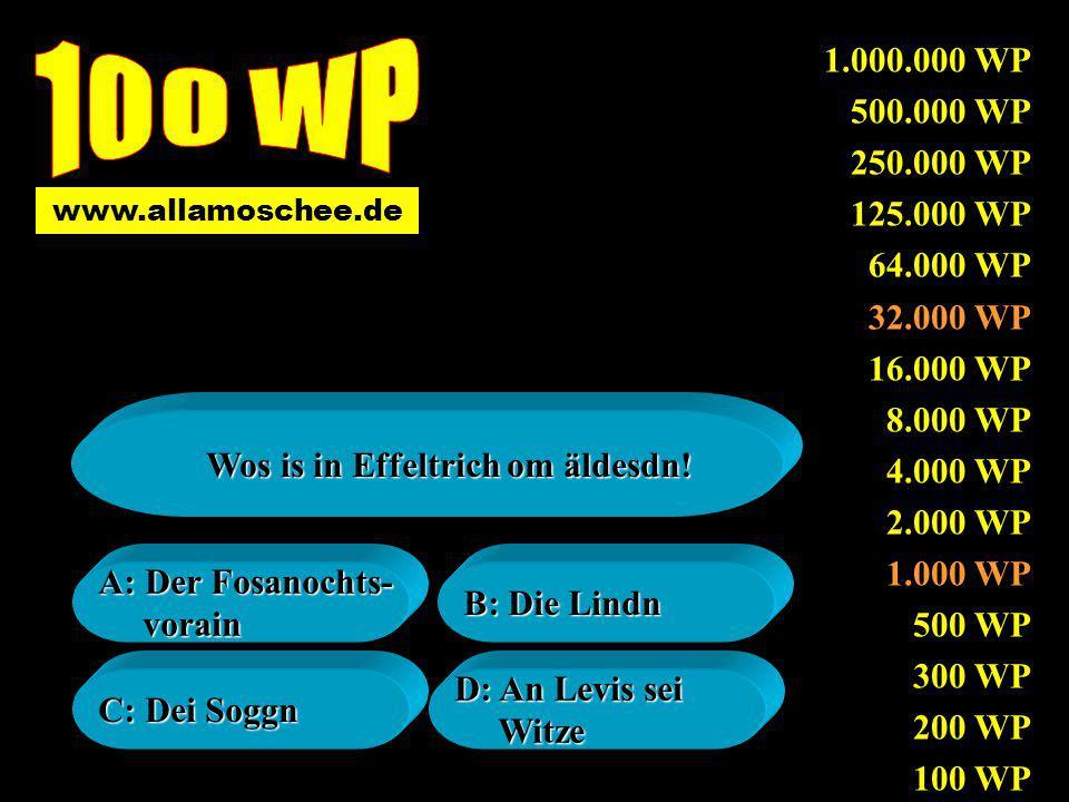 www.allamoschee.de