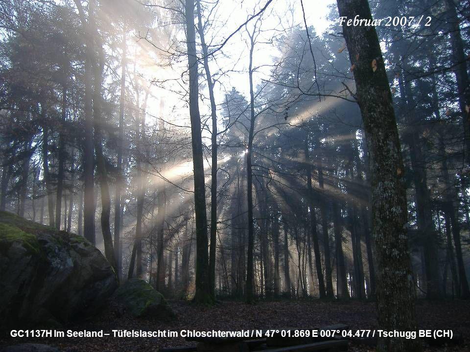 GC1137H Im Seeland – Tüfelslascht im Chloschterwald / N 47° 01.869 E 007° 04.477 / Tschugg BE (CH) Februar 2007 / 2