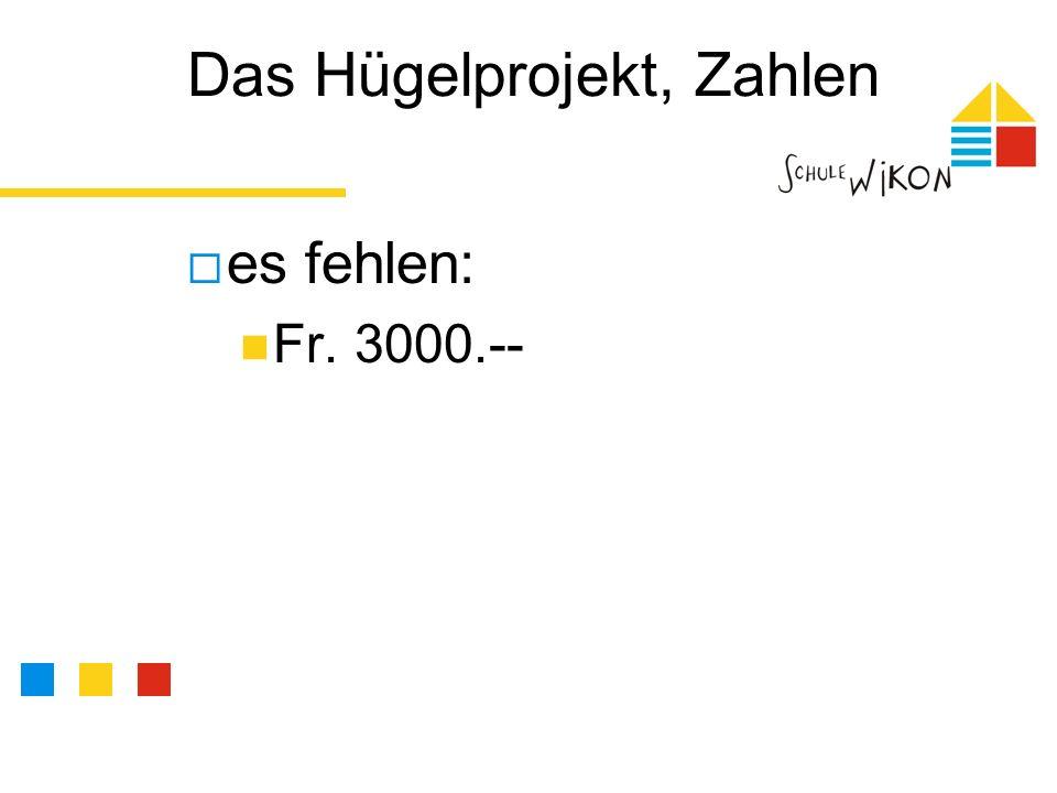 Das Hügelprojekt, Zahlen es fehlen: Fr. 3000.--