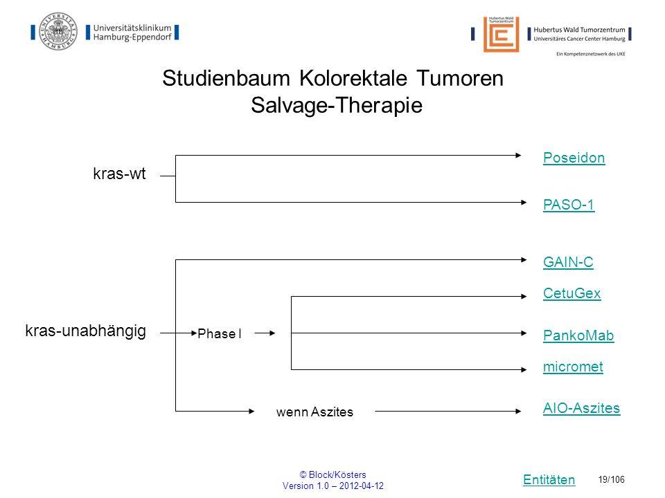 Entitäten © Block/Kösters Version 1.0 – 2012-04-12 19/106 Studienbaum Kolorektale Tumoren Salvage-Therapie PASO-1 wenn Aszites kras-wt Poseidon CetuGe