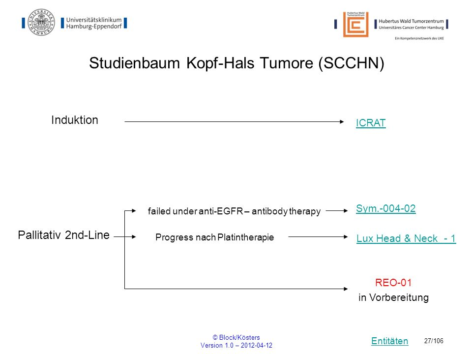 Entitäten © Block/Kösters Version 1.0 – 2012-04-12 27/106 Studienbaum Kopf-Hals Tumore (SCCHN) Induktion ICRAT Sym.-004-02 Pallitativ 2nd-Line REO-01