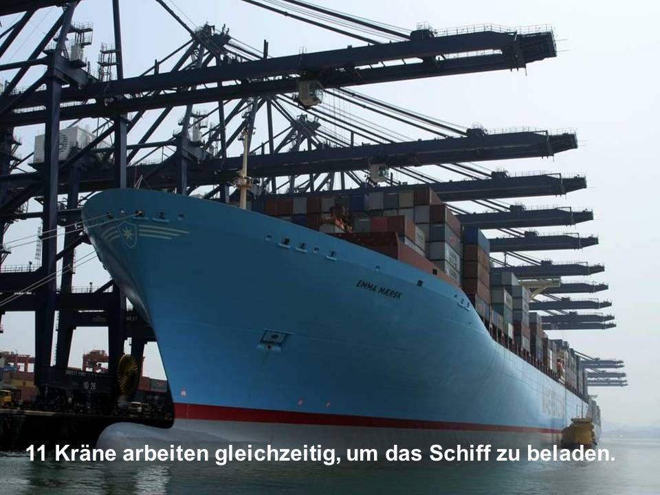 11 Kräne arbeiten gleichzeitig, um das Schiff zu beladen.