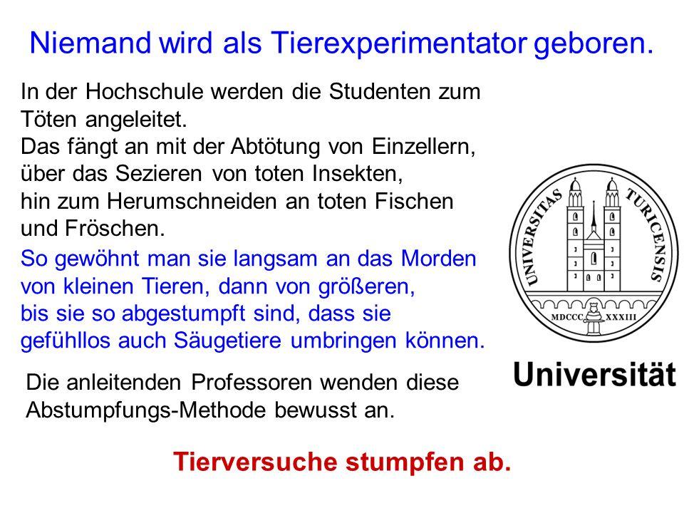 Niemand wird als Tierexperimentator geboren. In der Hochschule werden die Studenten zum Töten angeleitet. Das fängt an mit der Abtötung von Einzellern