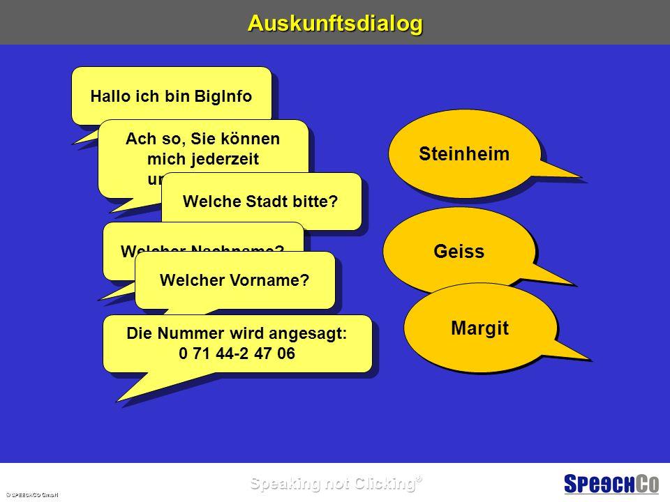 © S PEECH C O GmbH Überblick Wie spricht BigInfo Wie spricht BigInfo.
