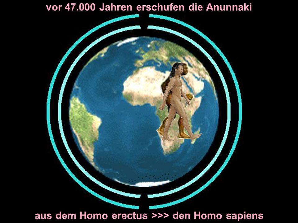 vor 47.000 Jahren erschufen die Anunnaki aus dem Homo erectus >>> den Homo sapiens