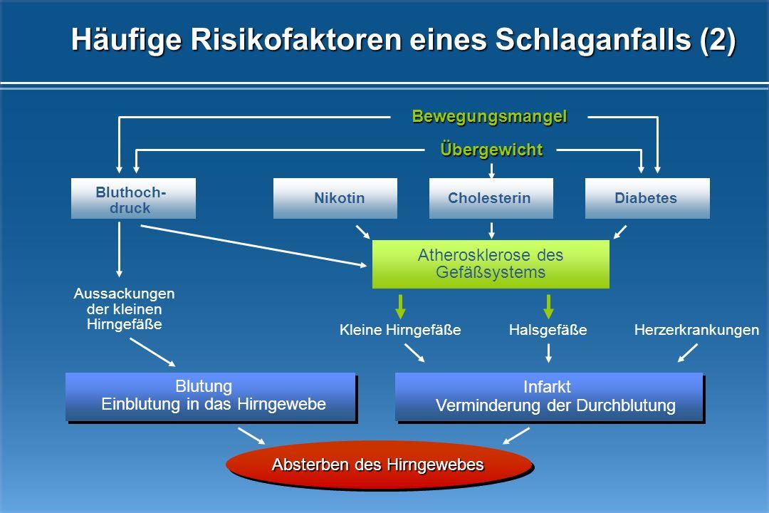 BluthochdruckHerzrhythmusstörungen Fettstoffwechselstörungen Alkoholmissbrauch Rauchen Alter Mangelnde Bewegung Familiäre Vorbelastung Diabetes mellit