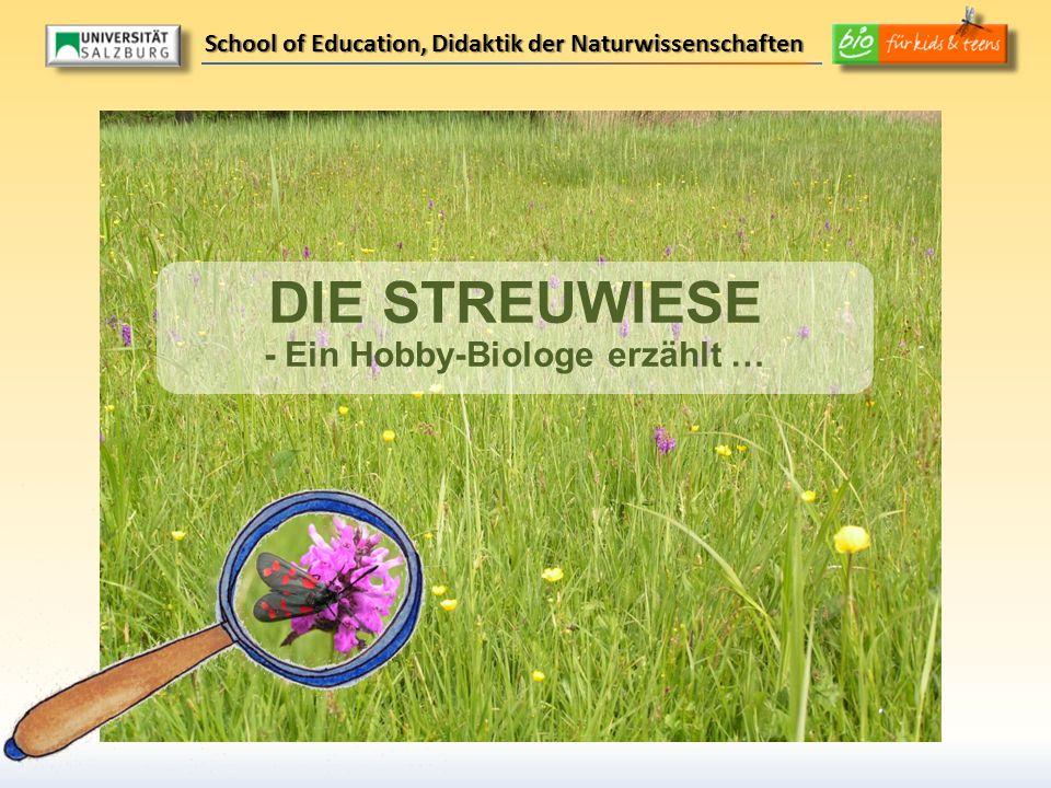 DIE STREUWIESE - Ein Hobby-Biologe erzählt … School of Education, Didaktik der Naturwissenschaften
