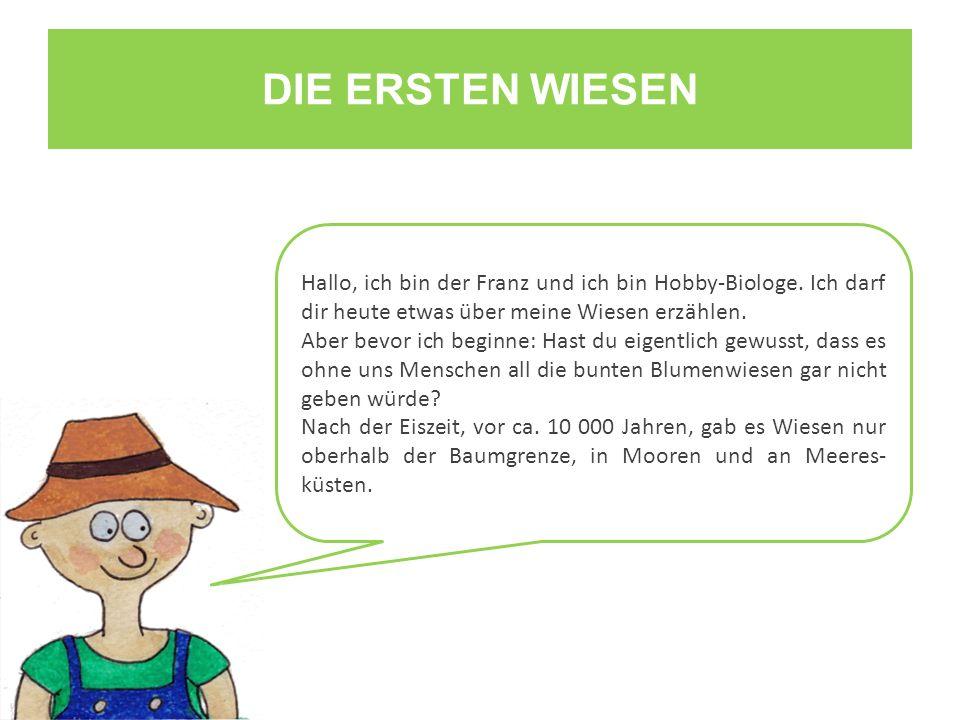 DIE ERSTEN WIESEN Hallo, ich bin der Franz und ich bin Hobby-Biologe. Ich darf dir heute etwas über meine Wiesen erzählen. Aber bevor ich beginne: Has