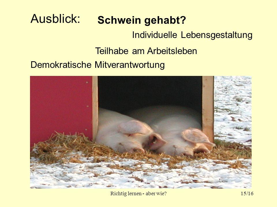Richtig lernen - aber wie 15/16 Ausblick: Teilhabe am Arbeitsleben Demokratische Mitverantwortung Individuelle Lebensgestaltung Schwein gehabt