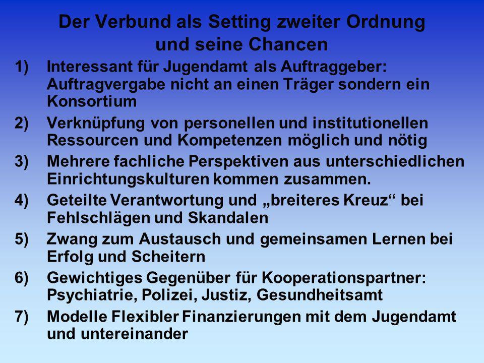 Der Verbund als Setting zweiter Ordnung und seine Chancen 1)Interessant für Jugendamt als Auftraggeber: Auftragvergabe nicht an einen Träger sondern e