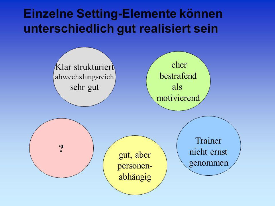 Einzelne Setting-Elemente können unterschiedlich gut realisiert sein ? gut, aber personen- abhängig Trainer nicht ernst genommen Klar strukturiert abw