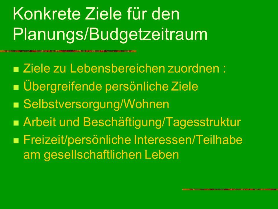 Konkrete Ziele für den Planungs/Budgetzeitraum Ziele zu Lebensbereichen zuordnen : Übergreifende persönliche Ziele Selbstversorgung/Wohnen Arbeit und