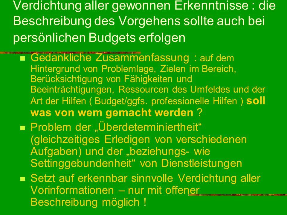 Verdichtung aller gewonnen Erkenntnisse : die Beschreibung des Vorgehens sollte auch bei persönlichen Budgets erfolgen Gedankliche Zusammenfassung : a