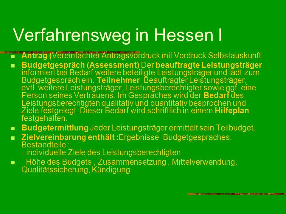 Verfahrensweg in Hessen I Antrag (Vereinfachter Antragsvordruck mit Vordruck Selbstauskunft Budgetgespräch (Assessment) Der beauftragte Leistungsträge