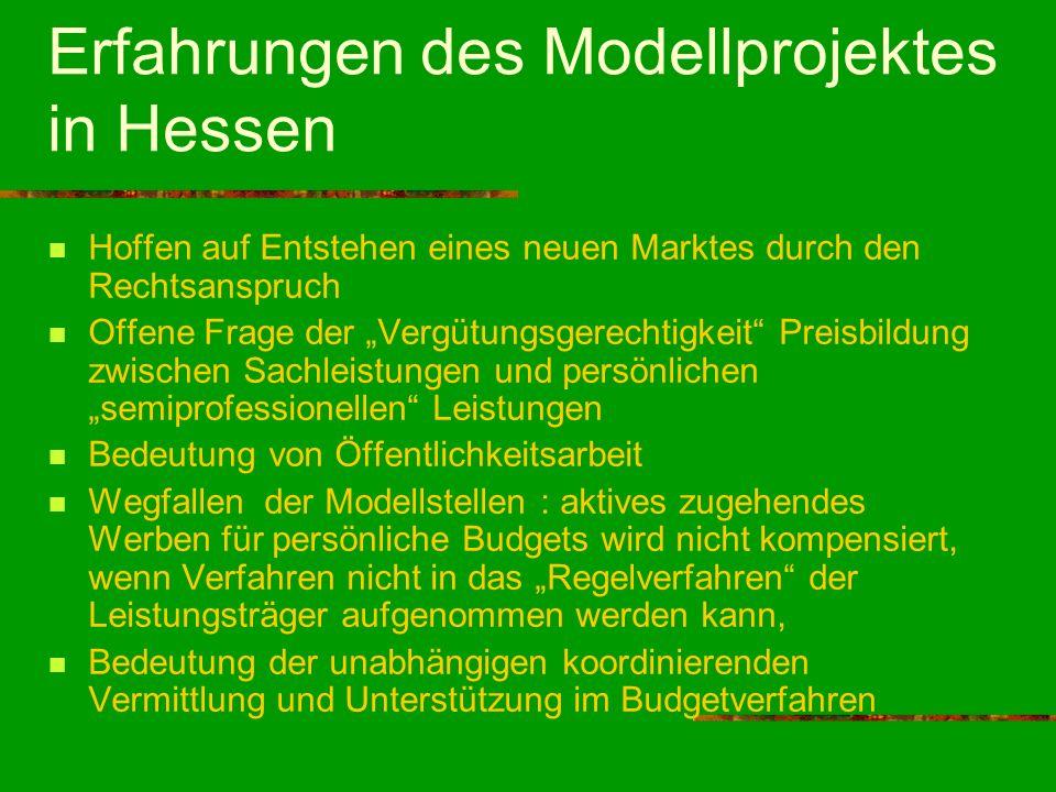 Erfahrungen des Modellprojektes in Hessen Hoffen auf Entstehen eines neuen Marktes durch den Rechtsanspruch Offene Frage der Vergütungsgerechtigkeit P