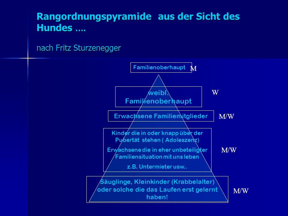 Rangordnungspyramide aus der Sicht des Hundes ….nach Fritz Sturzenegger weibl.