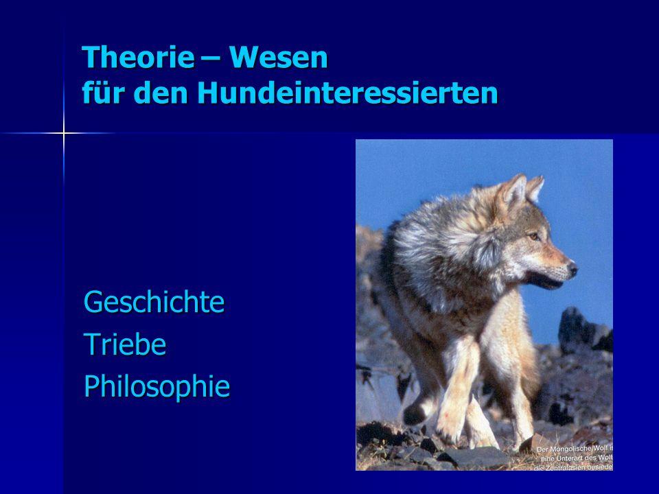 Theorie – Wesen für den Hundeinteressierten GeschichteTriebePhilosophie
