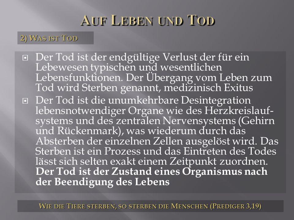 3) W AS IST L EBEN UND T OD W IE DIE T IERE STERBEN, SO STERBEN DIE M ENSCHEN (P REDIGER 3,19)