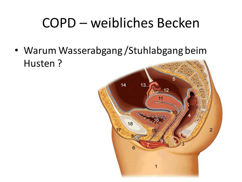 COPD – weibliches Becken Warum Wasserabgang /Stuhlabgang beim Husten ?