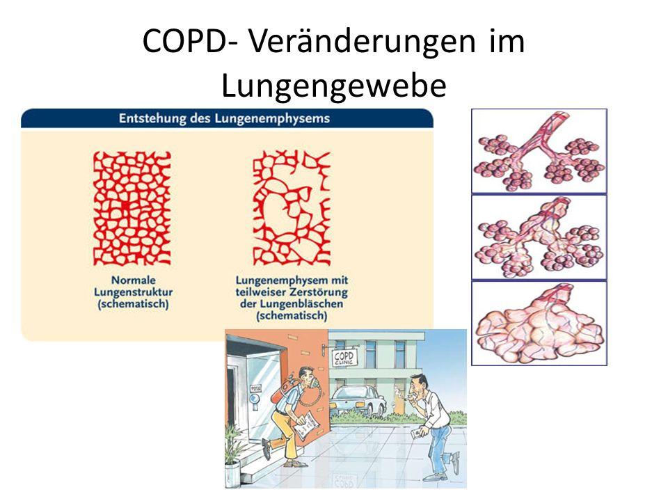 COPD- Veränderungen im Lungengewebe