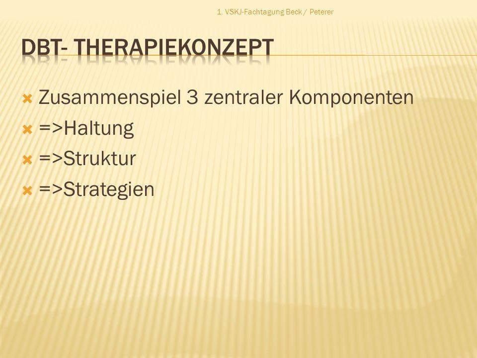 Zusammenspiel 3 zentraler Komponenten =>Haltung =>Struktur =>Strategien 1. VSKJ-Fachtagung Beck / Peterer