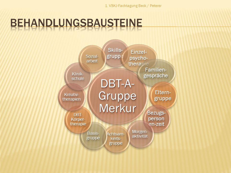 DBT-A- Gruppe Merkur Skills- gruppe Einzel- psycho- therapie Familien- gespräche Eltern- gruppe Bezugs- person en-zeit Morgen- aktivität Achtsam- keit