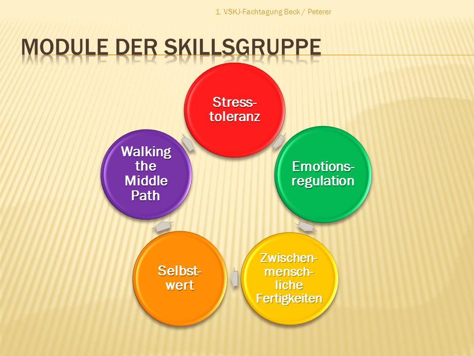 Stress- toleranz Emotions- regulation Zwischen- mensch- liche Fertigkeiten Selbst- wert Walking the Middle Path 1. VSKJ-Fachtagung Beck / Peterer