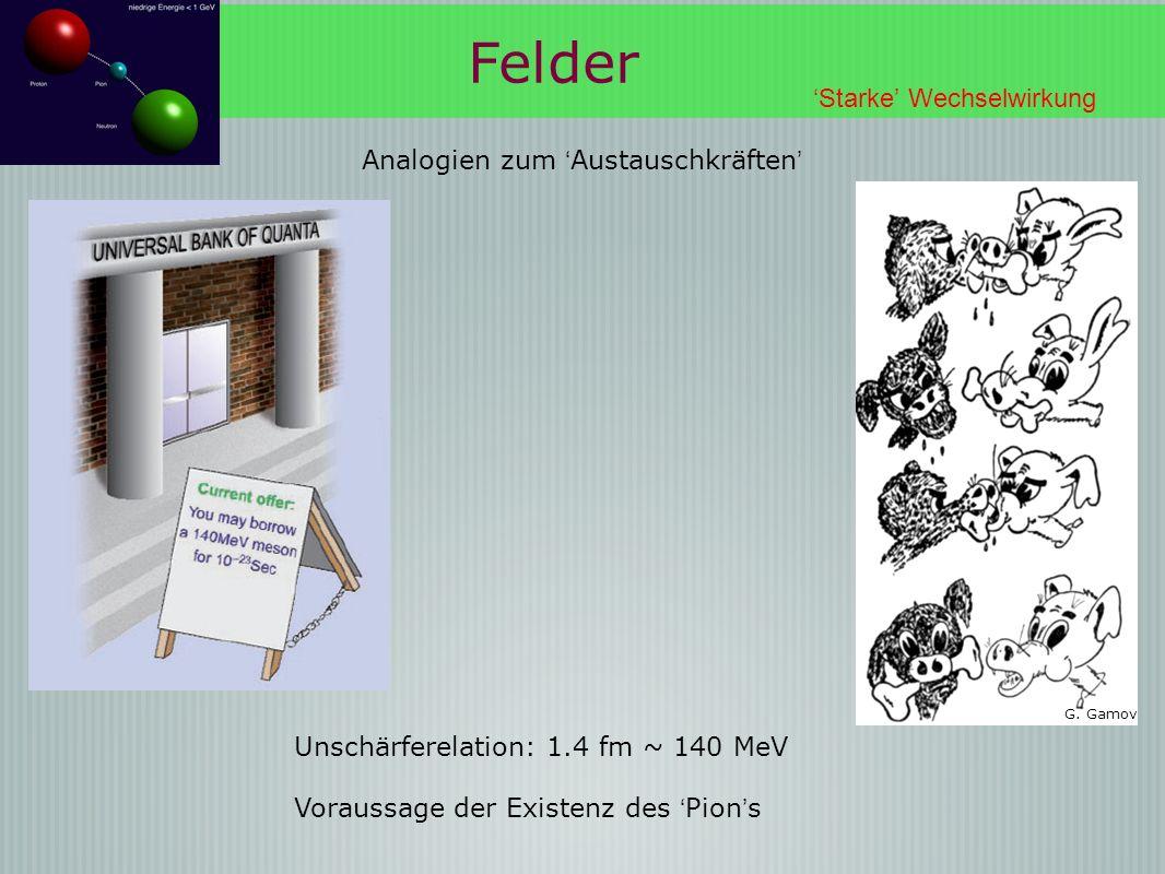 Unschärferelation: 1.4 fm ~ 140 MeV Analogien zum Austauschkräften G. Gamov Felder Starke Wechselwirkung Voraussage der Existenz des Pion s