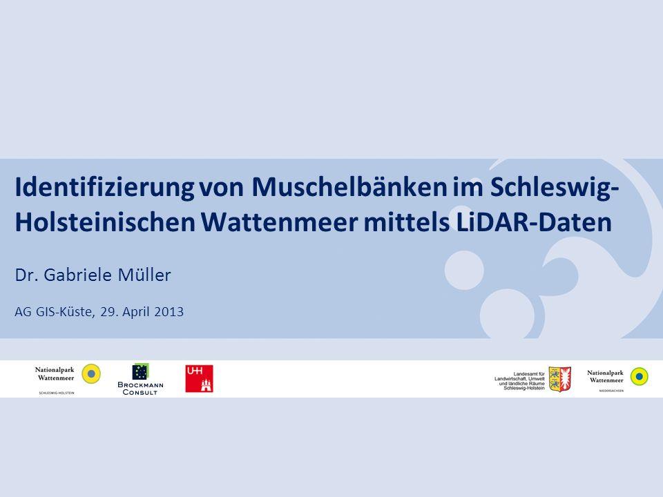 Identifizierung von Muschelbänken im Schleswig- Holsteinischen Wattenmeer mittels LiDAR-Daten Dr. Gabriele Müller AG GIS-Küste, 29. April 2013