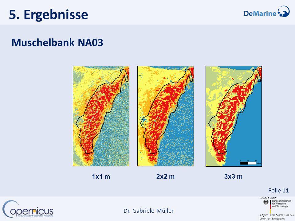 Gefördert durch: aufgrund eines Beschlusses des Deutschen Bundestages Dr. Gabriele Müller Folie 11 5. Ergebnisse Muschelbank NA03 1x1 m2x2 m 3x3 m