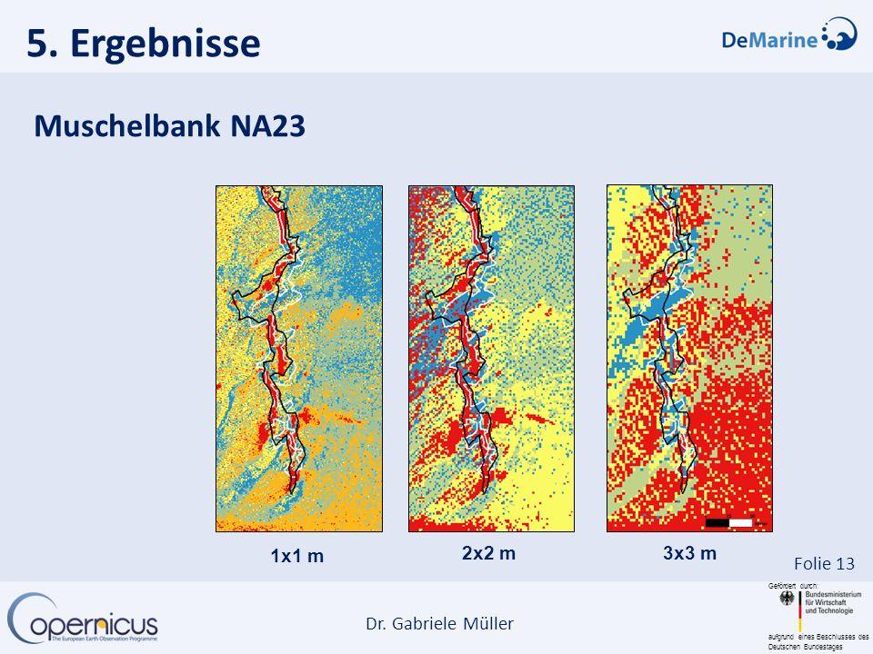 Gefördert durch: aufgrund eines Beschlusses des Deutschen Bundestages Dr. Gabriele Müller Folie 13 5. Ergebnisse 1x1 m 2x2 m3x3 m Muschelbank NA23