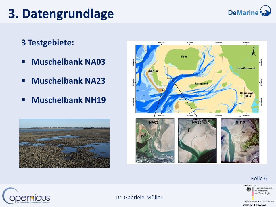 Gefördert durch: aufgrund eines Beschlusses des Deutschen Bundestages Dr. Gabriele Müller Folie 6 3. Datengrundlage 3 Testgebiete: Muschelbank NA03 Mu