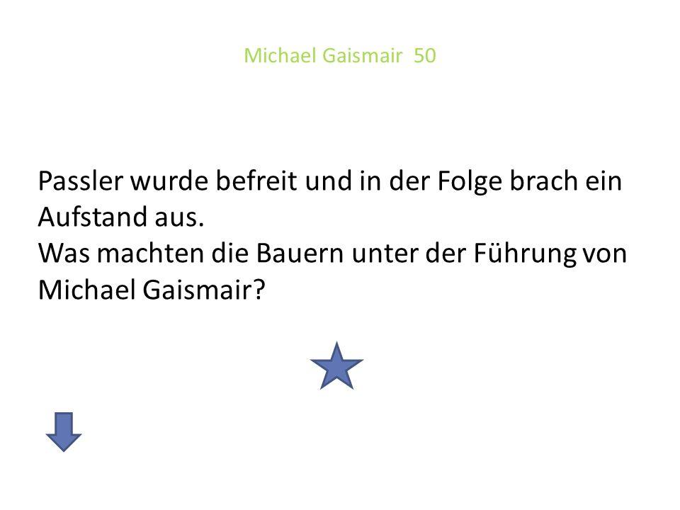 Michael Gaismair 50 Passler wurde befreit und in der Folge brach ein Aufstand aus. Was machten die Bauern unter der Führung von Michael Gaismair?