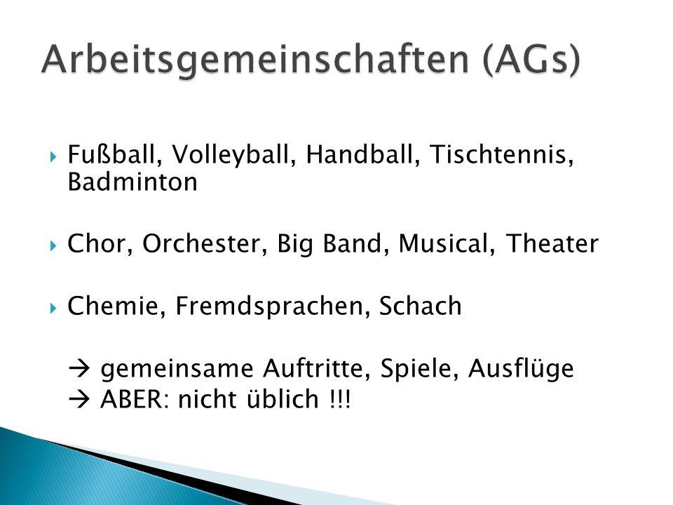 Fußball, Volleyball, Handball, Tischtennis, Badminton Chor, Orchester, Big Band, Musical, Theater Chemie, Fremdsprachen, Schach gemeinsame Auftritte,