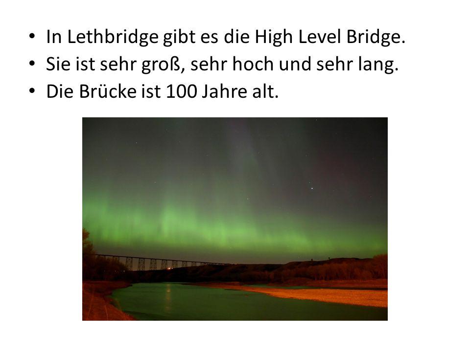 In Lethbridge gibt es die High Level Bridge. Sie ist sehr groß, sehr hoch und sehr lang.