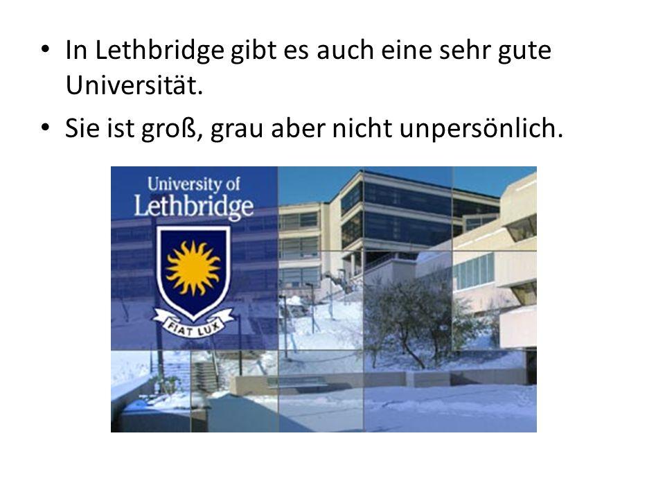 In Lethbridge gibt es auch eine sehr gute Universität. Sie ist groß, grau aber nicht unpersönlich.