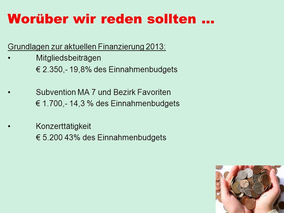 Worüber wir reden sollten … Grundlagen zur aktuellen Finanzierung 2013: Mitgliedsbeiträgen 2.350,- 19,8% des Einnahmenbudgets Subvention MA 7 und Bezi