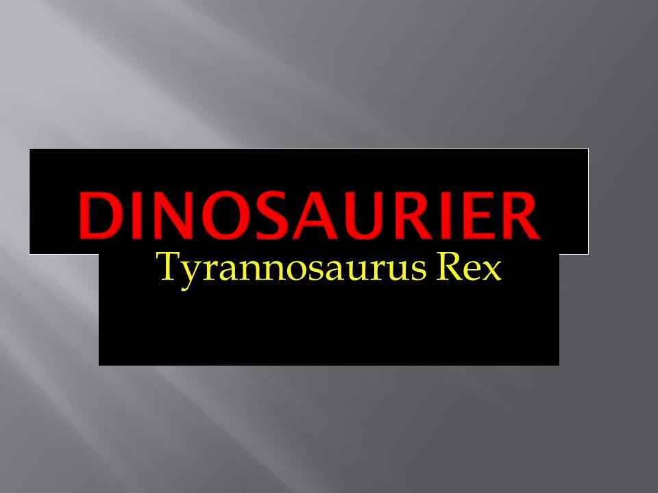 Der T-Rex wiegt 6,8 Tonnen Er wird 12,4 Meter lang Hüfthöhe: 4m